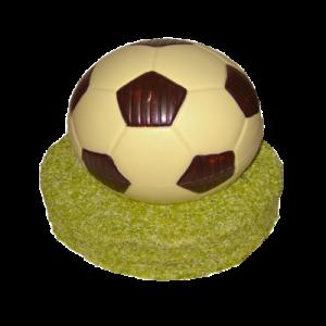 Fotbalový míč600,-Kč