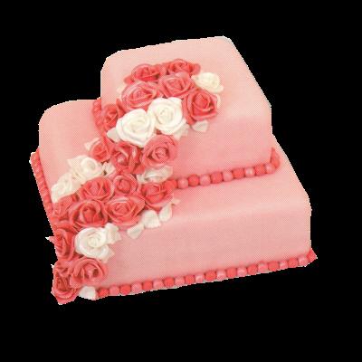 sv.dort růžový