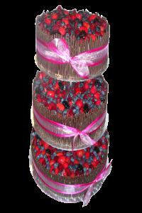 Tři patra-lesní ovoce36 porcí2.750,-Kč